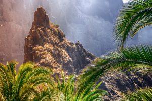 Tenerife tourism numbers 2019